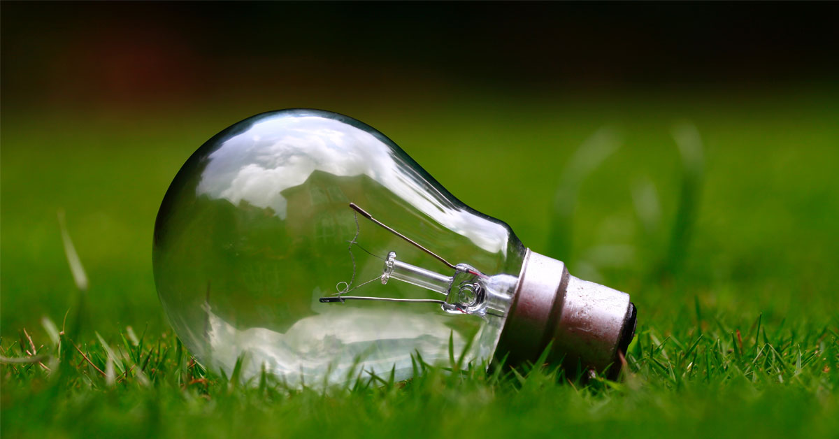 Närbild av en glödlampa på en gräsmatta